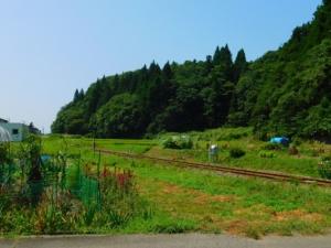 周辺の景色