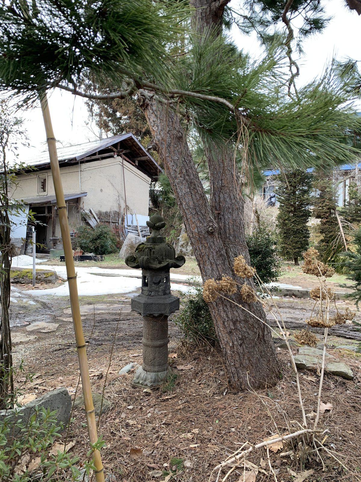 松の木と石灯篭